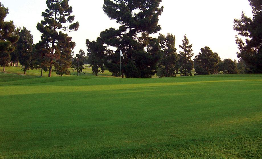 Golfzing Players Club Long Beach