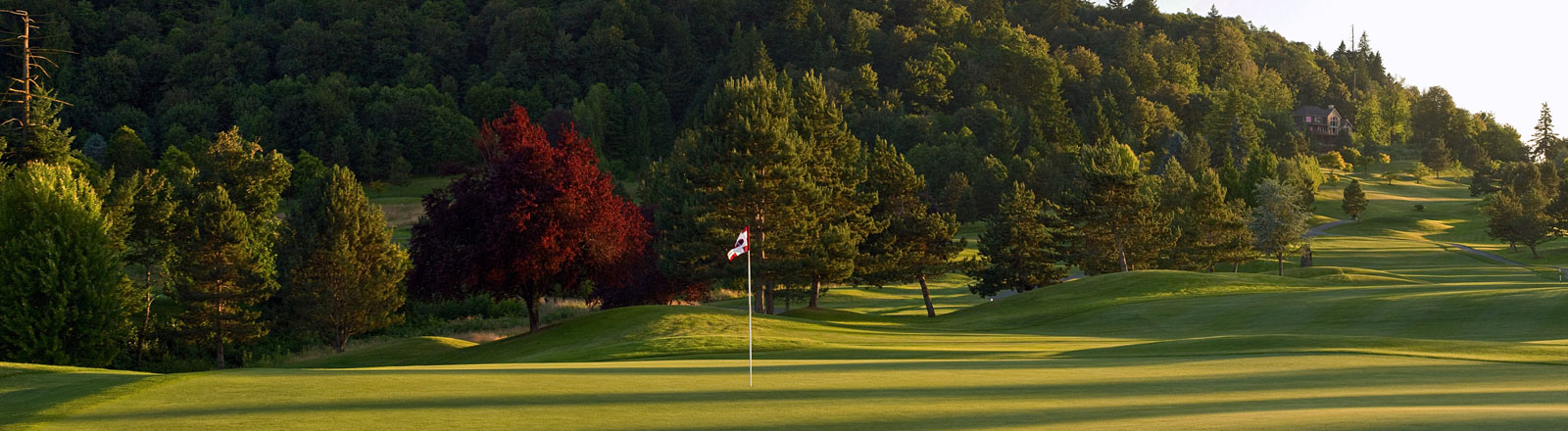 Persimmon Country Club Header